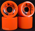ZAZA CRUISER 70mm 78a ORANGE